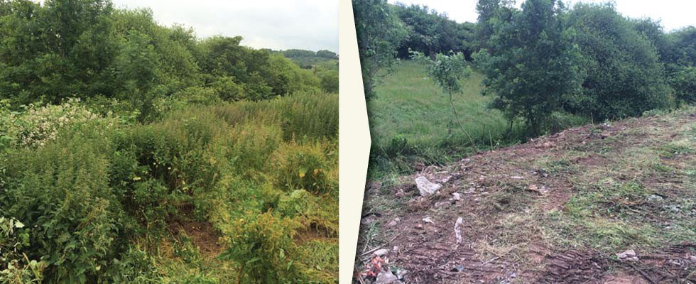 Woodfield-Wales-site-clearance-slider