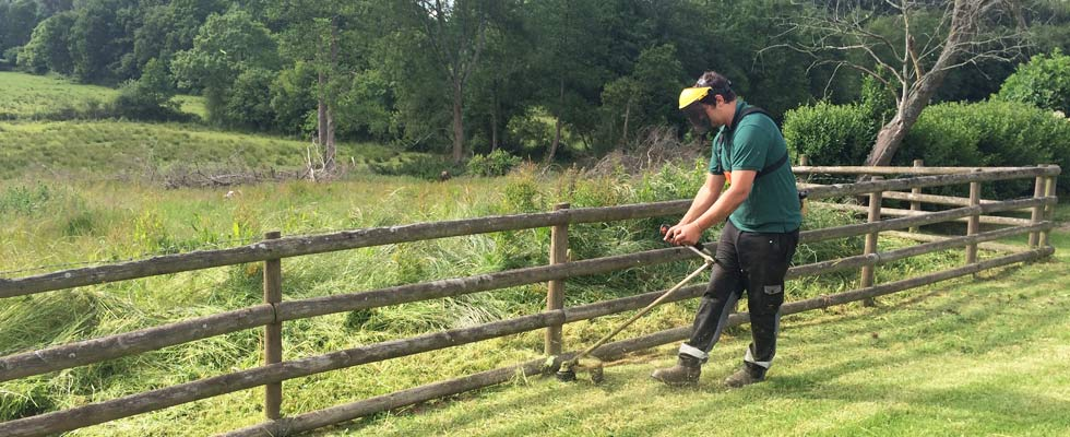 woodfield-wales-mowing-slider-2